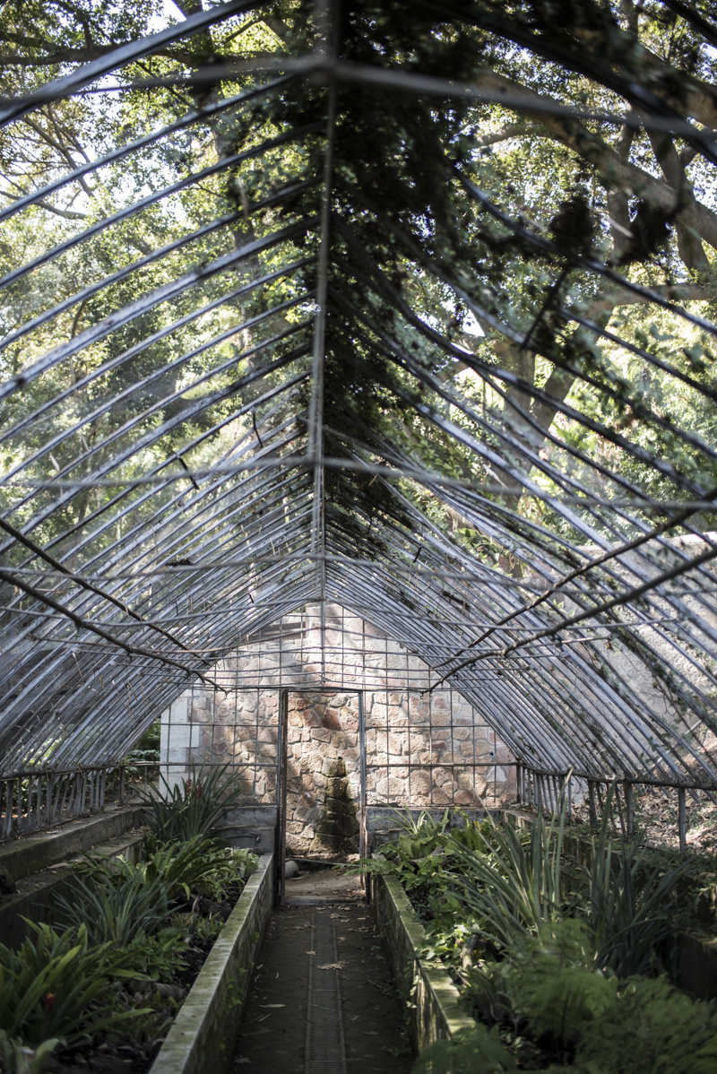 jardin botanico malaga-10