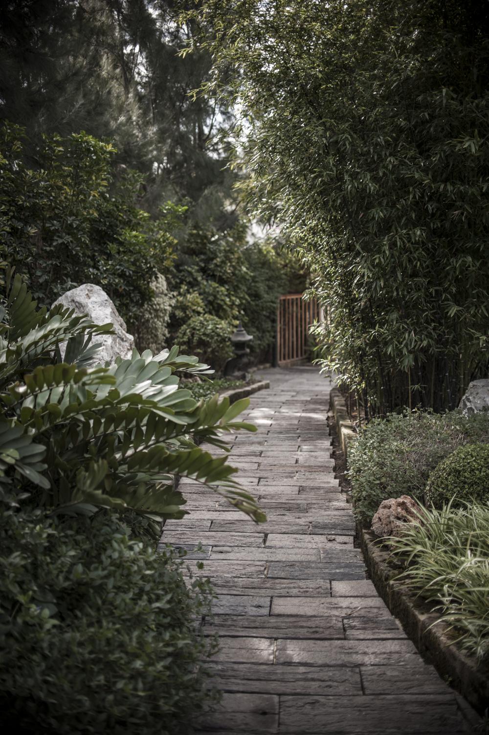 botanic garden Spain -10