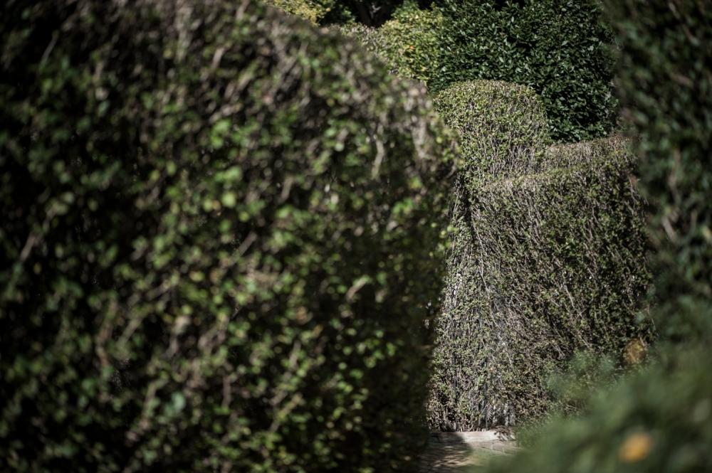 botanic garden Spain -2