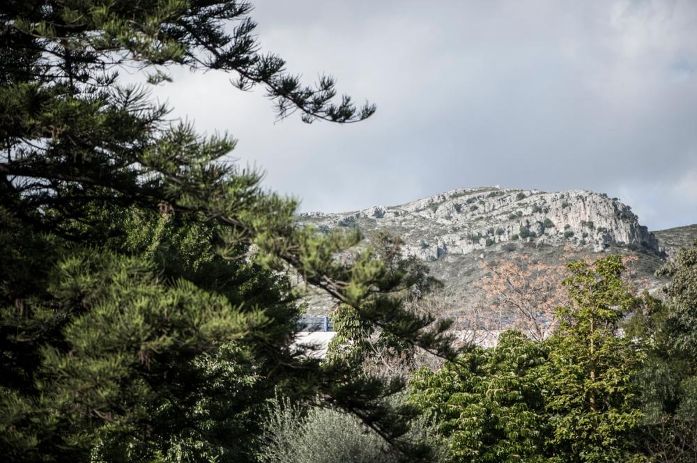 botanic garden Spain -3