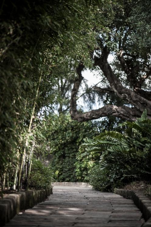 botanic garden Spain -8