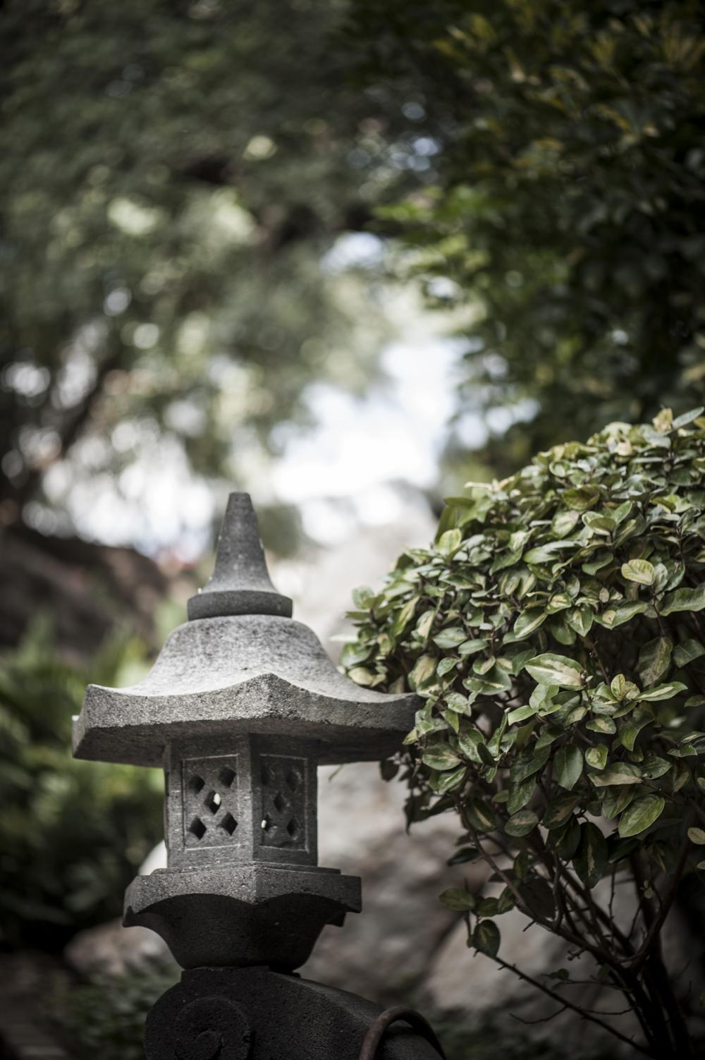 botanic garden Spain -9