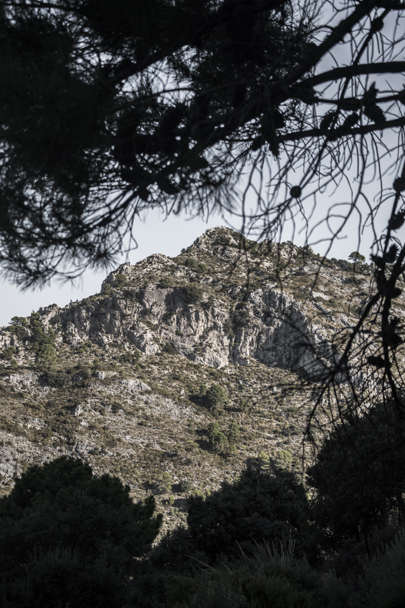 Marbella, La Concha (17)