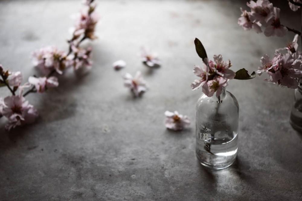 beetroot juice, almond blossom