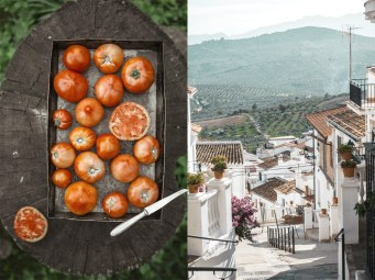 Food photography.Spain. Marbella Photographer. Aleksandra Olejnik