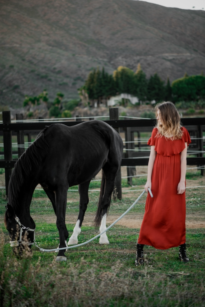 Horse, equestrian photography in Marbella, Aleksandra Olejnik